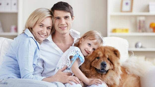 Wills & Trusts dog-young-family Direct Wills Derby